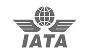 BDG International, Inc. Affiliate IATA
